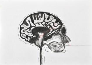 Addiction and reward pathways in the brain